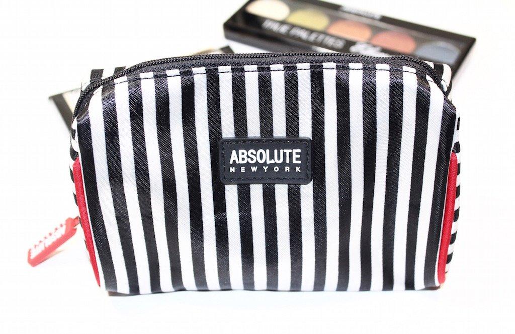 Aboslute New York makeup Bag