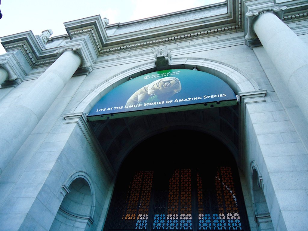 American Mouseum of Natural History Entrance