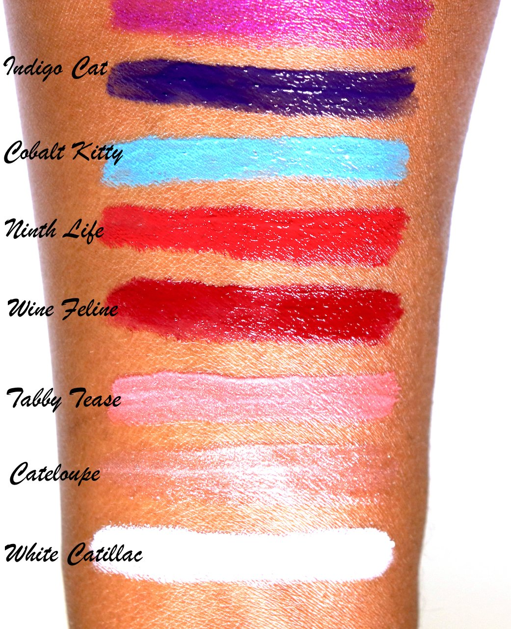 CoverGirl Katy Kat Gloss Swatches Dark Skin