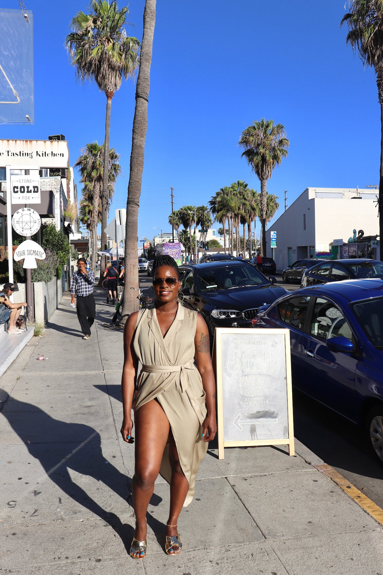 Day Trip To Venice Beach Abbot Kinney