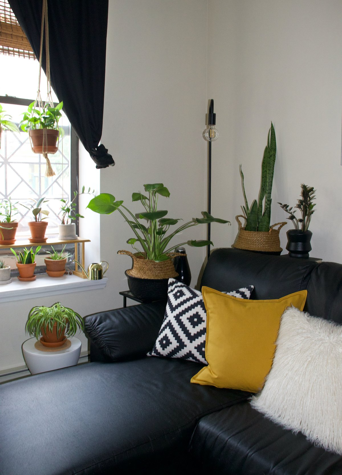 Living Room Plant Corner